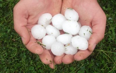 Are You Prepared for Hail Season?