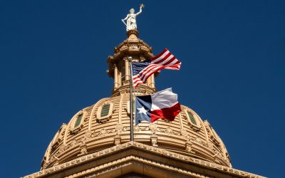 OPIC Recommendations Adopted During the 87th Texas Legislative Session